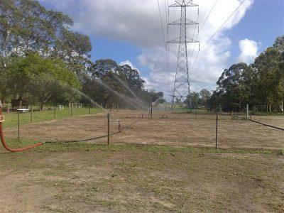 Establishing new pasture on the interconnector pipeline